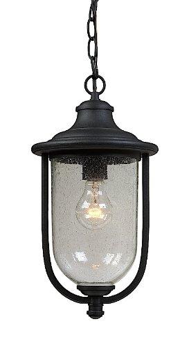 Artcraft Lighting AC8045BK Monterey Bay Outdoor Chain Pendant Light, Black
