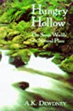 Hungry Hollow: The Story of a Natural Place (0387984151) by Dewdney, A.K.