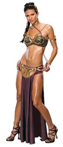 Women's Secret Wishes  Princess Leia Slave Costume, Brown, M (6/8)