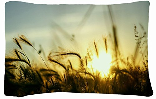 Microfiber Peach Standard Soft And Silky Decorative Pillow Case (20 * 26 Inch) - Nature Plants Nature Sun Fields Plants Skyscapes front-863730