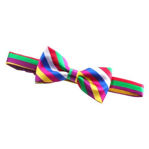 Multi Coloured Rainbow Design Bowtie Fits Neck Sizes 12