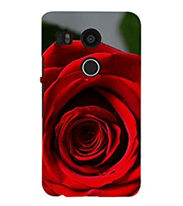 ifasho Designer Phone Back Case Cover LG Nexus 5 :: LG Google Nexus 5 :: Google Nexus 5 ( Skull Rose Flower )