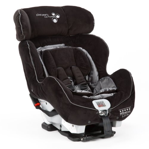 The First Years C670 True Fit Premiere Convertible Car Seat, Sticks N Stones