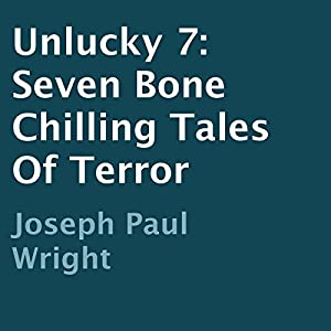 Unlucky 7 Audiobook