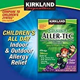 Generic Childrens Cetirizine Hydrochloride Oral Solution 16 Oz from Kirkland