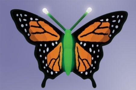 Can You Imagine Animotion Butterfly - Monarch