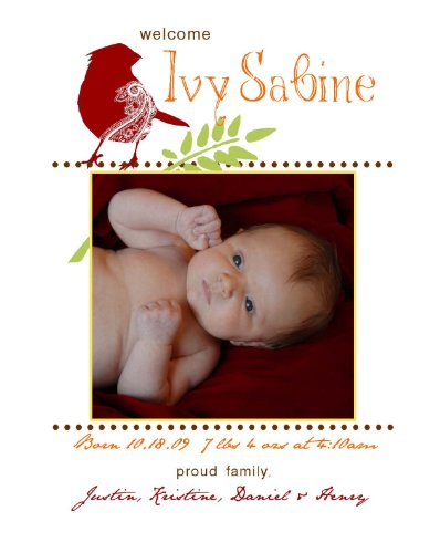 Baby Birth Announcement - Paperwhite Baby Chic - Personalized Custom Printing
