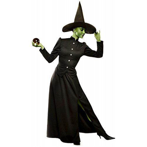 GSG Wicked Witch of the West Costume Adult Womens Halloween Fancy Dress (Creepy Witch Costume)