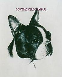 Boston Terrier - Portrait by Cindy Farmer
