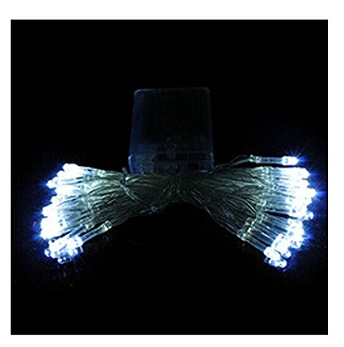Domire Battery Operated 40 Led Fairy String Lights Great For Christmas Decoration
