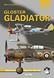 Image of Gloster Gladiator (Mushroom Magazine special: Yellow series)