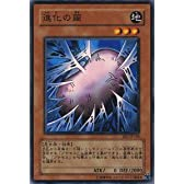 遊戯王カード 【進化の繭】 BE1-JP148-N 《ビギナーズエディション1》