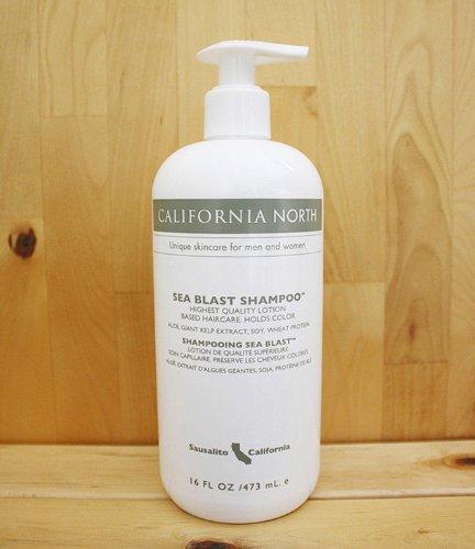 california-north-sea-blast-shampoo-sbs-16-oz-pump-bottle