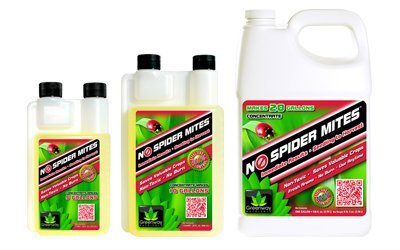 No Spider Mites Concentrate 16Oz (Makes 5 Gal) 704780 front-95938
