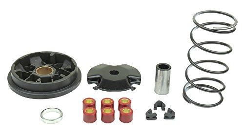 athena-p400485110001-speed-variator