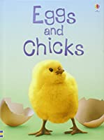 Eggs and Chicks (Usborne Beginners)