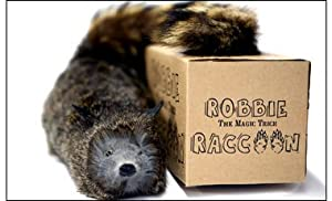 Robbie the Magic Trick Raccoon - Spring Animal - Includes Instructional Video Link