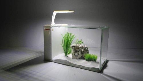 Aqua-Orion-40-in-wei-mit-Heizstab-Nano-Aquarium-Komplettaquarium-Mini-LED-MONDLICHT