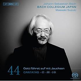 Siehe, ich will viel Fischer aussenden, BWV 88: Part II: Aria Duet: Beruft Gott selbst, so muss der Segen (Soprano, Alto)