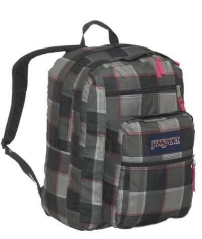 JanSport Student School Backpack French