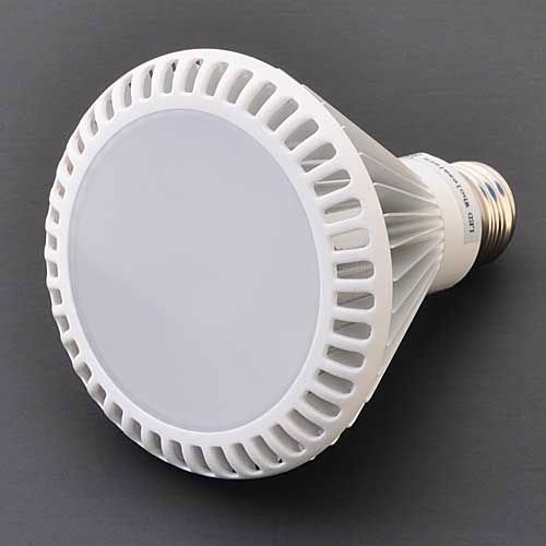12 Watt PAR30 LED Floodlight Wide Angle Screw
