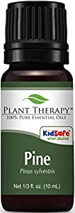 Plant Therapy Pine 10 ml Essential Oil