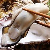 お歳暮 ギフト 鍋 殻付生牡蠣(かき)10個と生牡蠣むき身500g 加熱用 鍋セット 土手鍋用味噌付き 広島県産