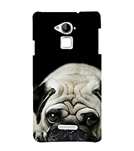 Vizagbeats cool pug Back Case Cover for Coolpad Note 3