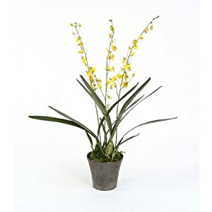 Reviews Silk Oncidium Orchid Plant In Crystal Pot Artificial Mixed Flower Arrangements Bhiusdhgjklsh