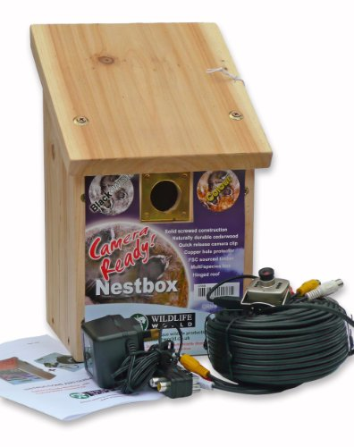 Wildlife World Camera-Ready Nestbox With Colour Only Camera Kit Black Friday & Cyber Monday