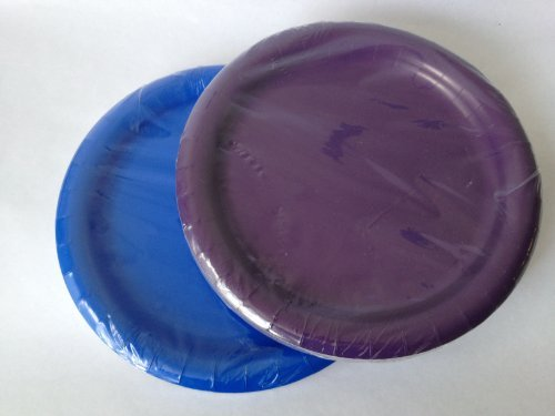 Blue and Purple Paper Party Plates 7 in - (48) Plates! - 1