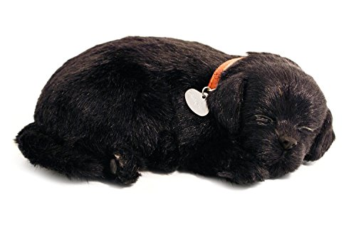 perfect-petzzz-black-lab-breathing-puppy-in-dog-bed