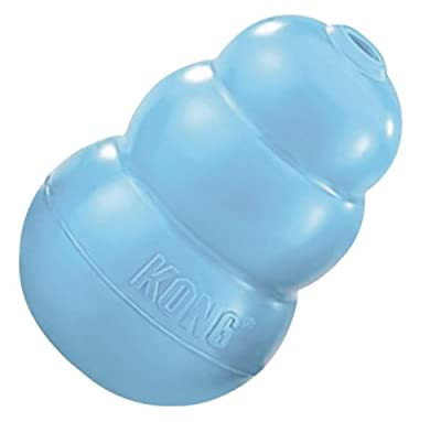 KONG Puppy KONG Toy, Assorted Pink/Blue