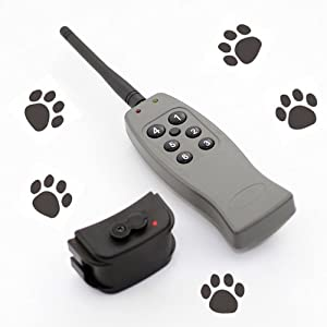 Dog Training Rechargeable Static Shock 6 Level Training Collar Safe Remote Control