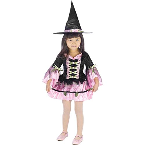 Child's Toddler Blossom Witch Costume (Sz:3-4t)