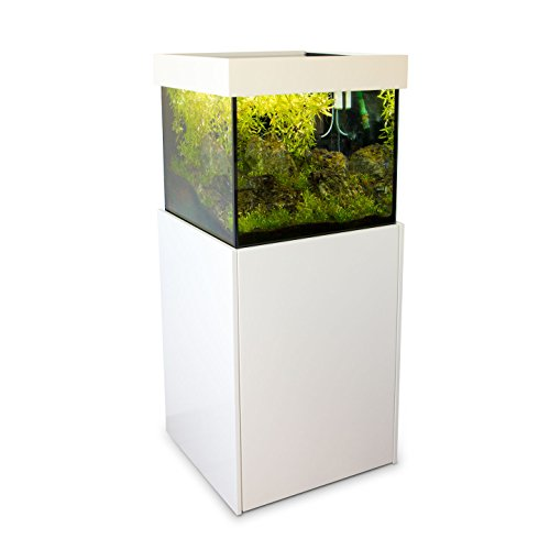 axperto design aquarium 60x60x57 wei als s und. Black Bedroom Furniture Sets. Home Design Ideas