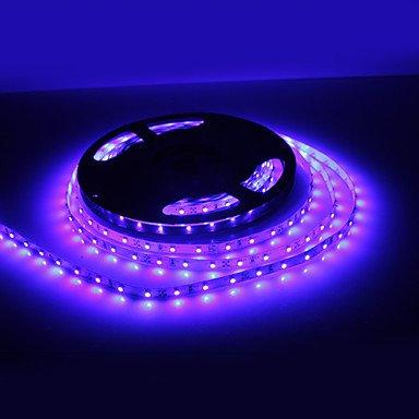 Ddl 10M 36W 600X3528 Smd Blue Light Led Strip Lamp (12V,Ip44)