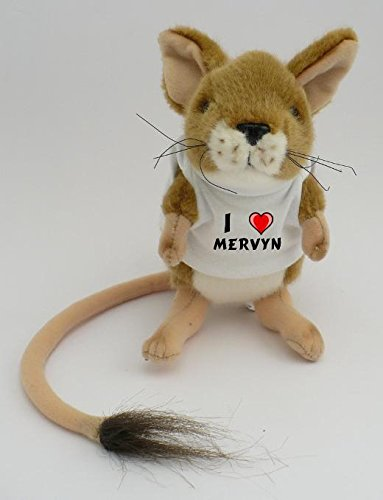 personalised-jumping-mouse-plush-toy-with-i-love-mervyn-t-shirt-first-name-surname-nickname