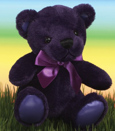 First & Main 1586 Purple Rainbow Bear