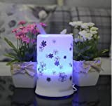 FlyingBee 100 ML White with Chrysanthemum Pattern Ultrasonic Aroma Diffuser Humidifier with 4 Timer Settings and 7 Color Changes