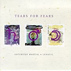 Tears For Fears Saturnine Martial & Lunatic lyrics