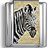 Zebra Italian charm