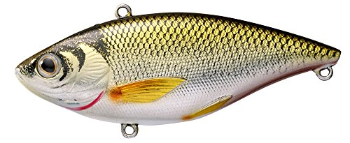 Koppers Shiner Trap Golden Sinking Lure, 1/2-Ounce, Gold/Black Rattle