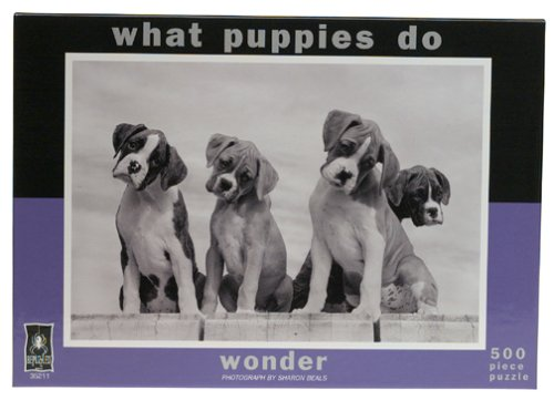 Cheap BePuzzled What Puppies Do – Wonder Jigsaw Puzzle: 500 Pcs (B000068BQN)