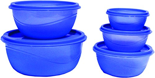 Princeware Store Fresh Plastic Bowl Package Container, Set of 5, Blue