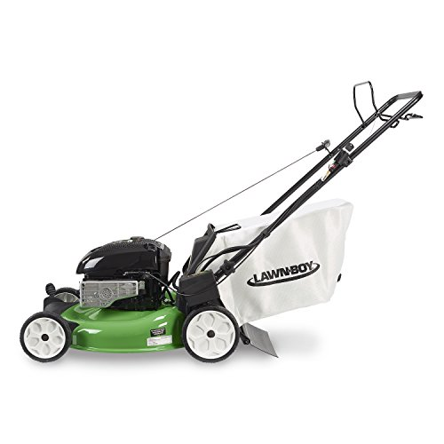 Lawn Boy 10738 Briggs And Stratton Electric Start Self