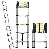 ALEKO Tl-10 Portable Aluminum Telescoping Ladder