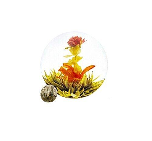 Be Oneself Fresh Flavor Natural Craft Flower Tea Blooming Jasmine Flower Tea Ball Jinlong Thomsonae Set Of 10 80G Unique Healthy Tea