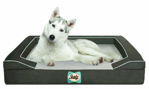 Sealy Dog Bed with Quad Layer Technology, Large, Modern Gray (Sealy Dog Bed Extra Large compare prices)