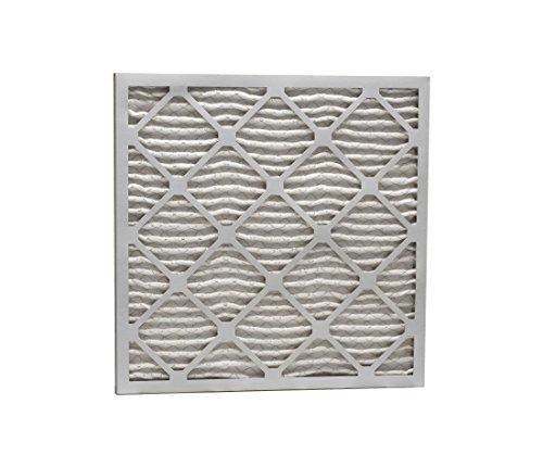 17 x 17 x 1 MERV 13 Pleated Air Filter P25S.011717